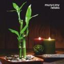 Muzyczny Relaks - Kaminiecki, Christ (reedycja)