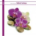 Sekret Lotosu - Łukasz Kaminiecki (reedycja)