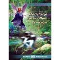 Medytacje ze Światłem Żywiołów - Elżbieta Giryn