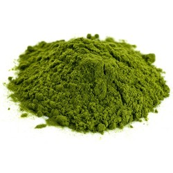 Chlorella proszek 100 g