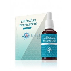 Tribulus Terrestris FORTE ekstrakt ziołowy z naci buzdyganka naziemnego