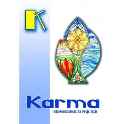 Karma - odpowiedzialność za swoje życie - Mariusz Włoczysiak