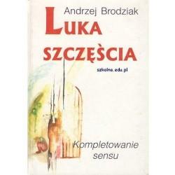 Luka szczęścia. Kompletowanie sensu - Andrzej Brodziak