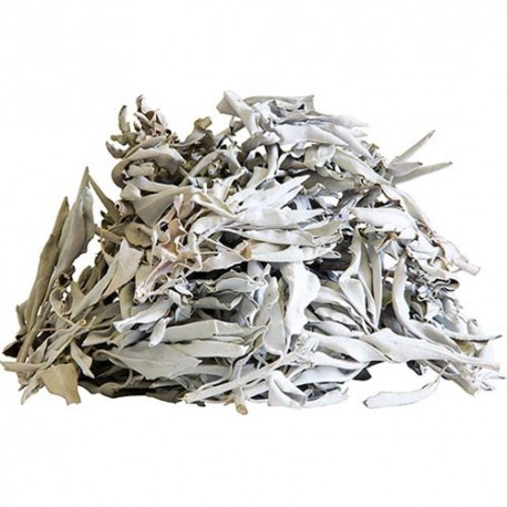 Biała Szałwia liście 100g