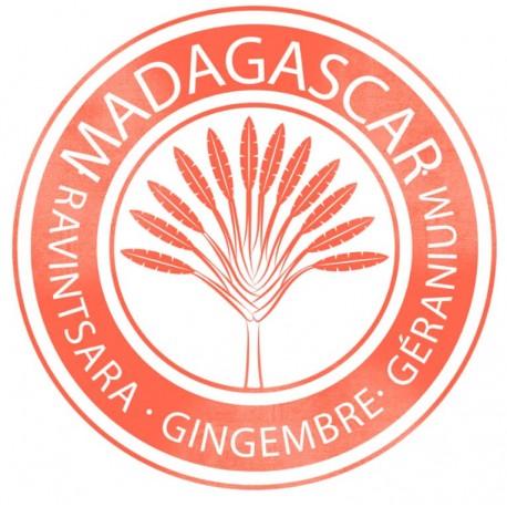 EKSKLUZYWNA EKOLOGICZNA woda perfumowana WAKA-MADAGASCAR próbka 1,5ml FIILIT