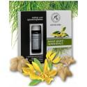 Zestaw do Aromaterapii YLANG-YLANG i LEMONGRASS Naturalne OLEJKI i Ceramiczne GWIAZDKI Aromatika
